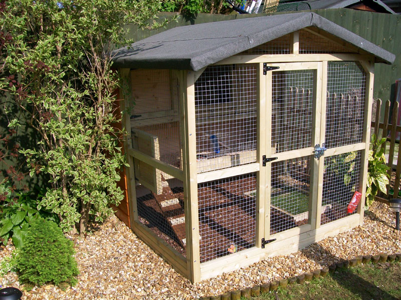 Chicken coops on pinterest coops p allen smith and for Chicken enclosure ideas